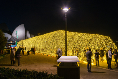 Event photography of the Vivid Light Festival - Tunnel of Light at Royal Botanic Gardens