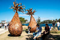 Scuplture at Sydney's Barangaroo Park titled The Grove