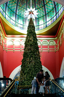 Sydney event photographer photographs the Christmas tree with Swarovski crystals