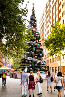 Commercial photographer photographs the 2016 Christmas Tree in Martin Place Sydney